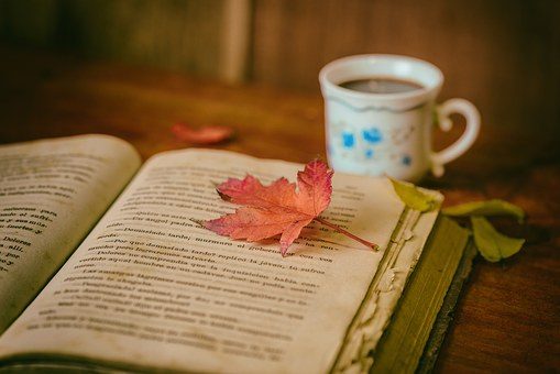 Photo of an open book with an autumn leaf on top